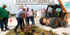 Siembra de arboles y recuperación de parques, Barranquilla